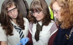 Students see Chemistry at Work